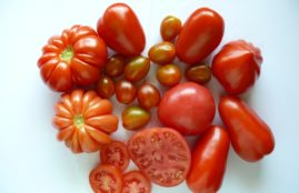 pomidory mix